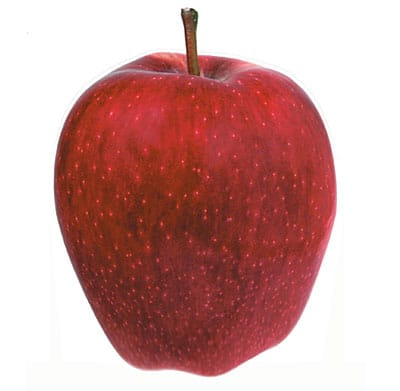 Pomme-Red-Chief